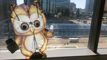 Wilbert the EcoWise Owl checking out a green roof in Edmonton.